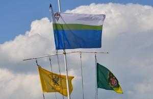 flagi uks